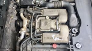 Jaguar-(12)