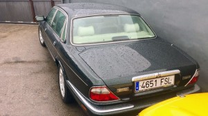 Jaguar-(2)